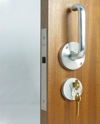Cl 100 Locking Pocket Door With Lever Trim And Ada Interior Option